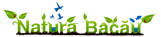 """Centrul Regional de Ecologie Bacau Custodele sitului NATURA 2000 """"Lacurile de acumulare Buhuşi – Bacău –Bereşti"""""""